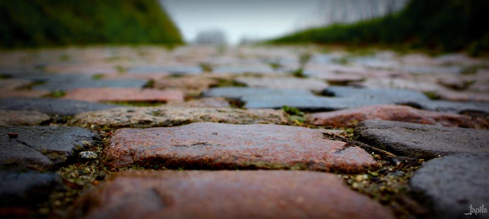Bunter Weg aus Steinen
