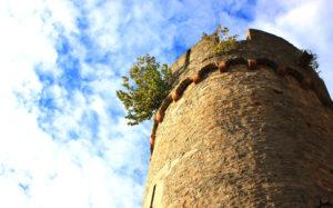 Burgturm mit Blick nach oben