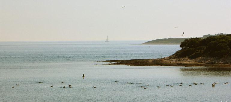 Küste Vorschaubild