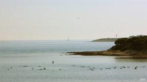 Ruhe an einer Küste am Wasser