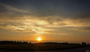 Sonnenuntergang am Feld