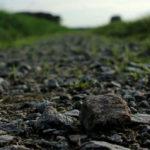 Der steinige Weg